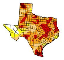 Southeastern Travis County is on the line between severe drought and extreme drought, according to this week's U.S. Drought Monitor. We've been running a rain deficit for at least three years.